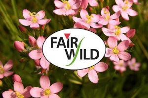 fairwild-pukka-herbs