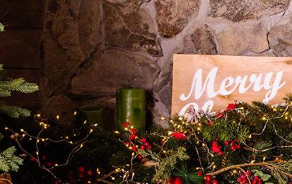 Comment recycler son sapin de Noël après les fêtes ?
